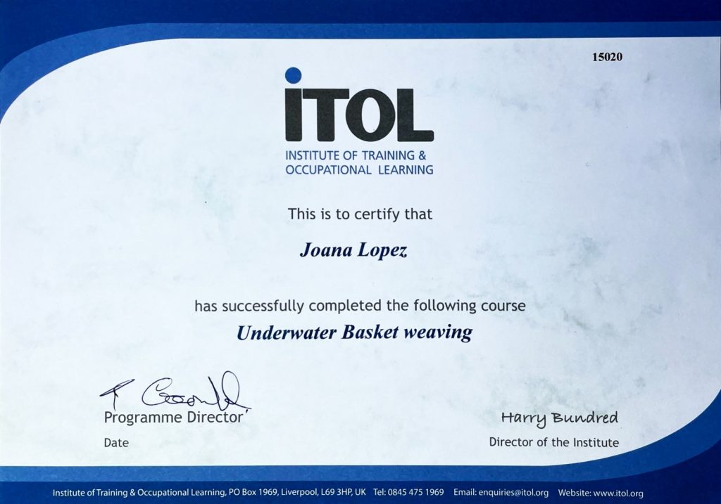ITOL accreditation example certificate awarded for training